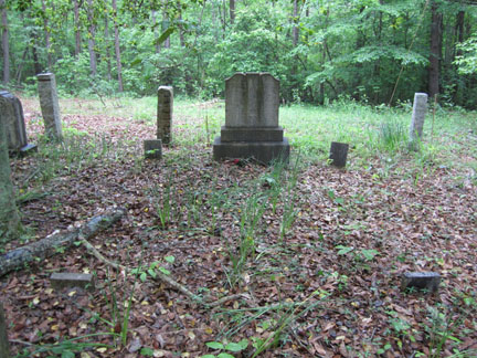 Pleasant Henderson Martin and Charity Elizabeth McAnally Martin's grave.